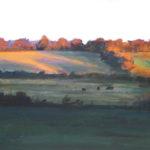 Farm in Autumn Light