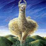 Llofty Llama